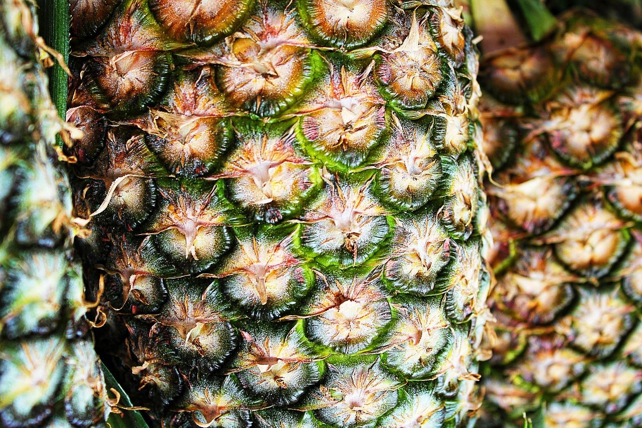 Espagne: la cocaïne était cachée dans des ananas