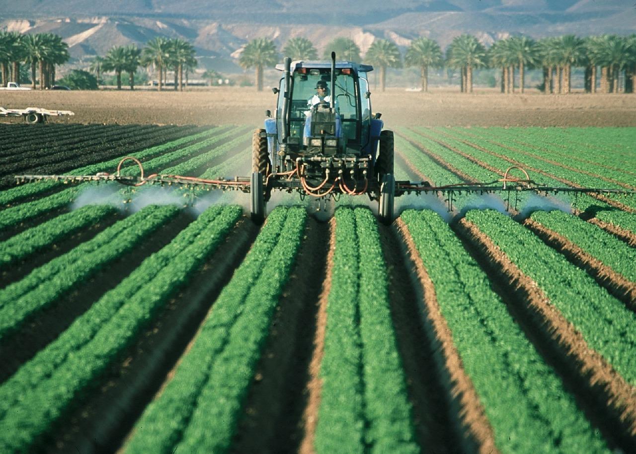 Les pesticides néonicotinoïdes interdits à partir de samedi