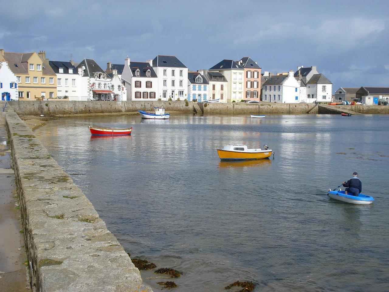 Le rat de Sein bientôt éradiqué de la petite île bretonne