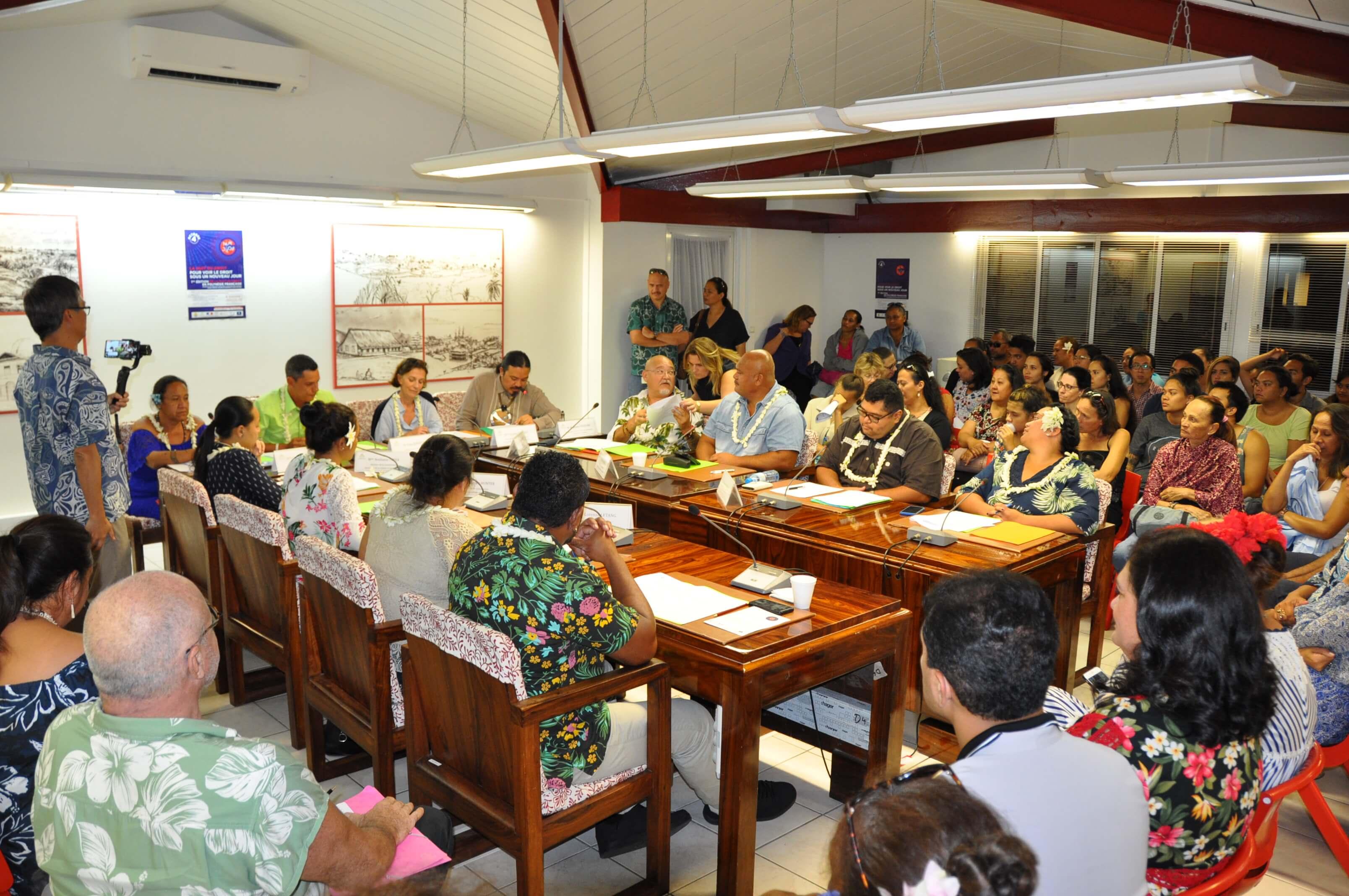 Deux commissions législatives ont été programmées durant la soirée. Ici, on retrouve la commission en charge de la Culture. Crédit photo : CESC