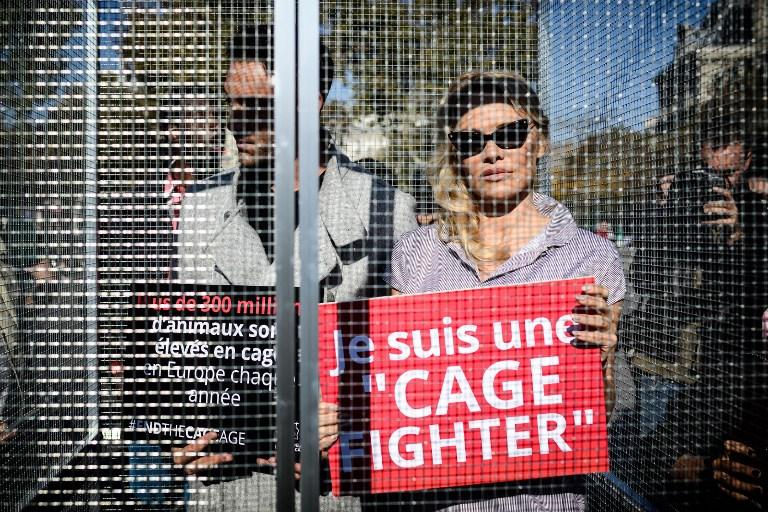 Pamela Anderson et Yannick Jadot en cage pour dénoncer les souffrances animales