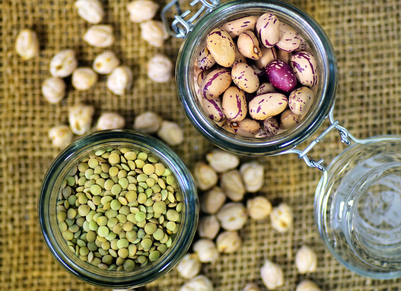 Légumineuses, sources de protéines, bien ancrées dans le paysage culinaire