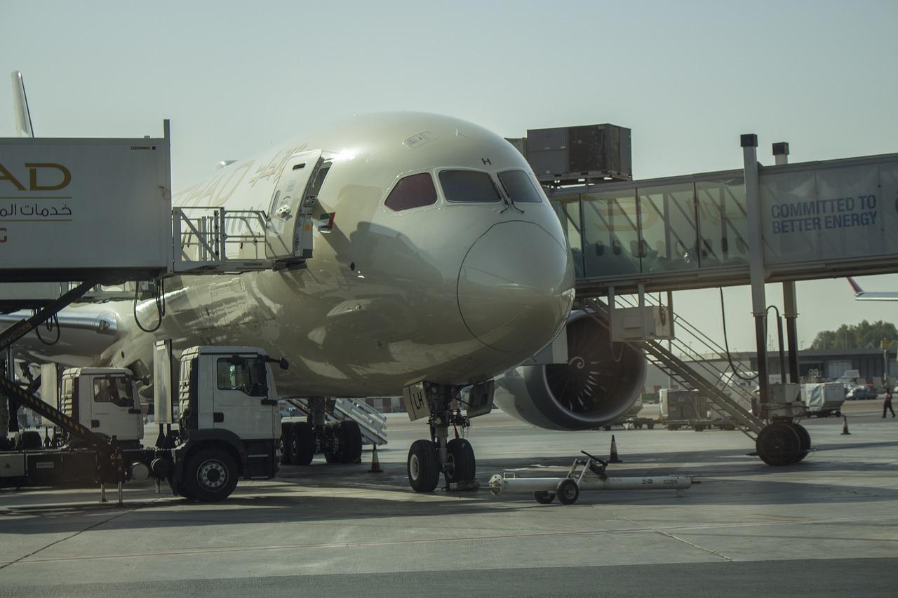 Une Indonésienne accouche à bord d'un avion d'Etihad Airways