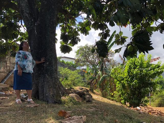 Plusieurs mormons du Pieu de Faa'a sillonneront tous les quartiers de Faa'a ce samedi, de 8 heures à midi.