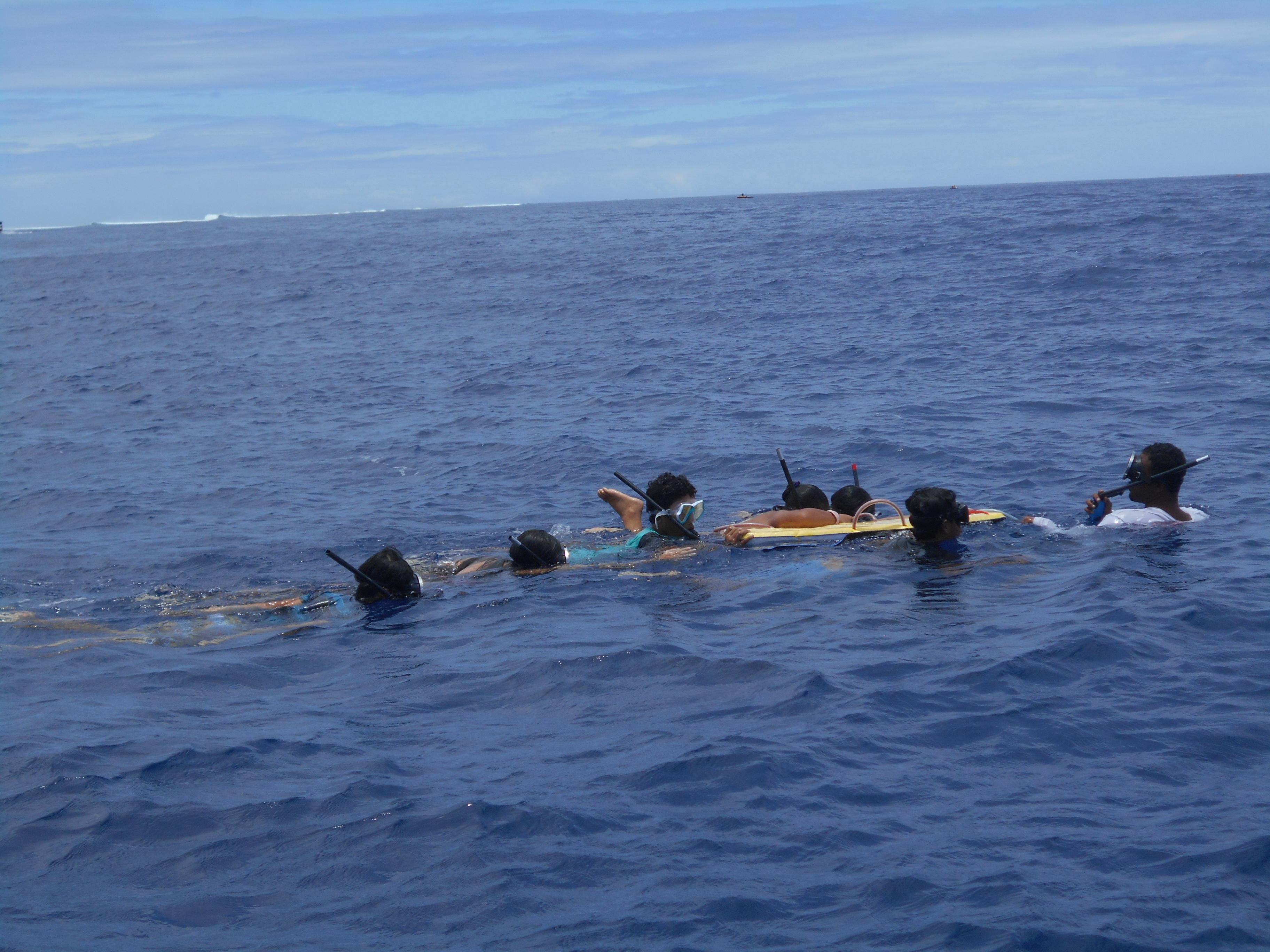 Afareaitu : des collégiens à la rencontre des baleines