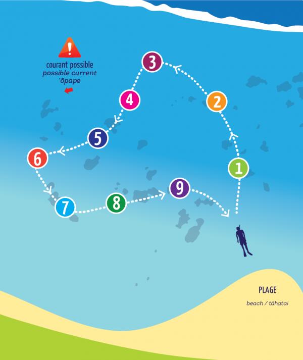 Partez à la découverte du lagon sur le sentier aquatique de Vaiava