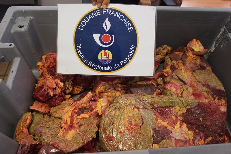 20 kg de viande de tortue trouvés dans le fret d'un bateau venant des Îles Sous-le-vent (crédit : direction régionale des douanes de Polynésie française)