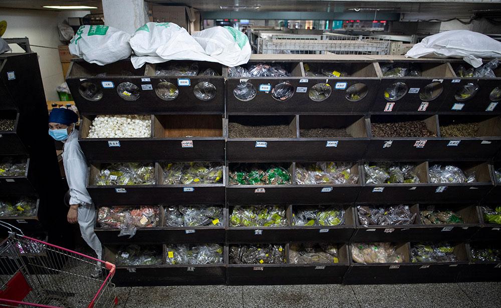 Entre plantes et scorpions, les Chinois attachés à leur médecine traditionnelle