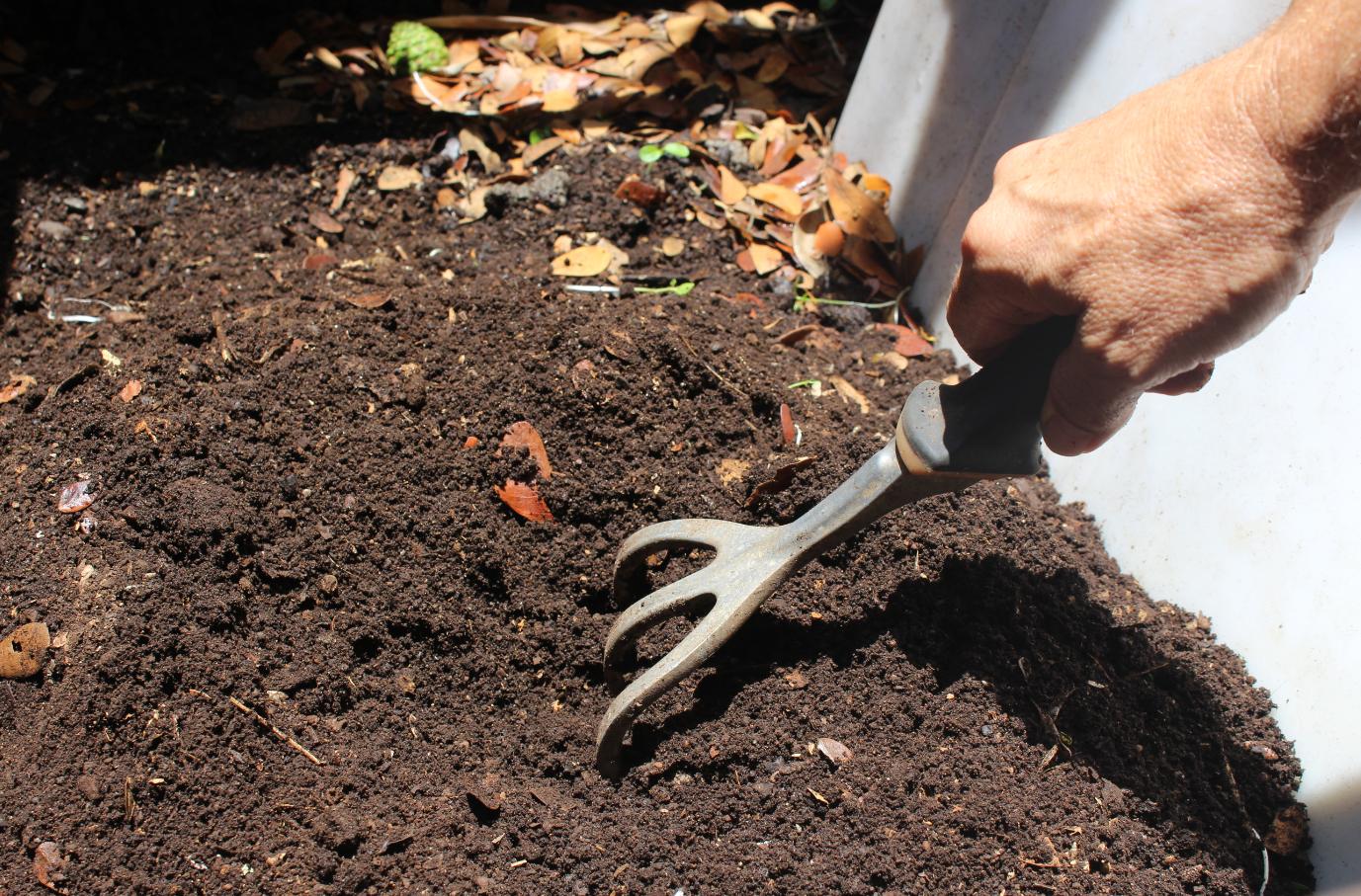 Le compost fini, est riche en sels nutritifs.