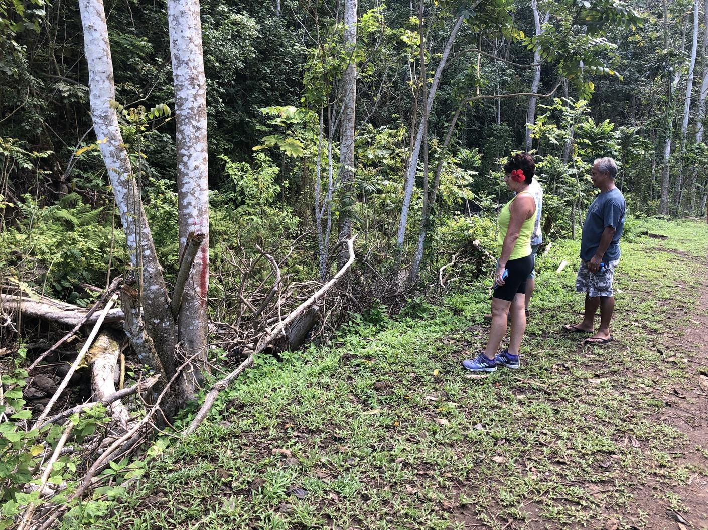 """On aimerait  que le gouvernement prenne ses responsabilités pour dégager ces troncs du lit de la rivière pour permettre ainsi à l'eau de s'écouler normalement lors d'une crue"""", insiste Vanina une résidente de la vallée."""