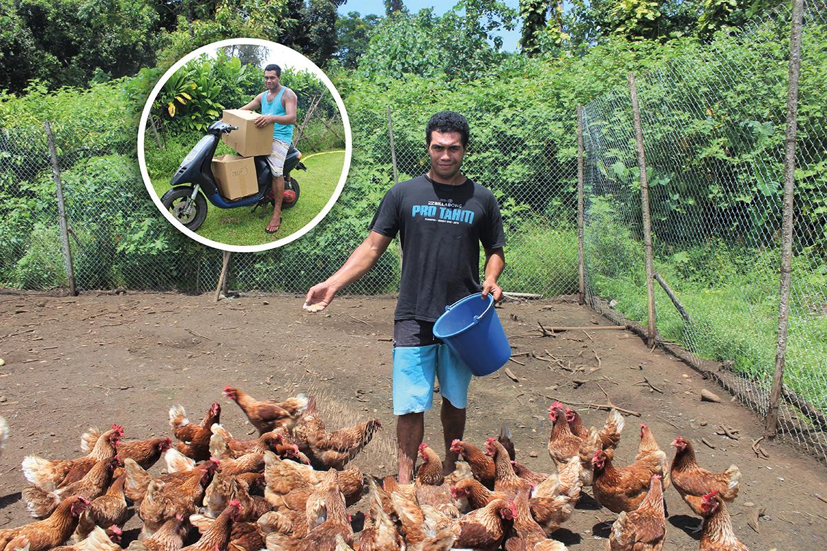 Moïse élève ses 260 poules pondeuses en plein air.