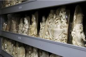 De l'ivoire de mammouth découvert dans des bibelots en ivoire du Cambodge