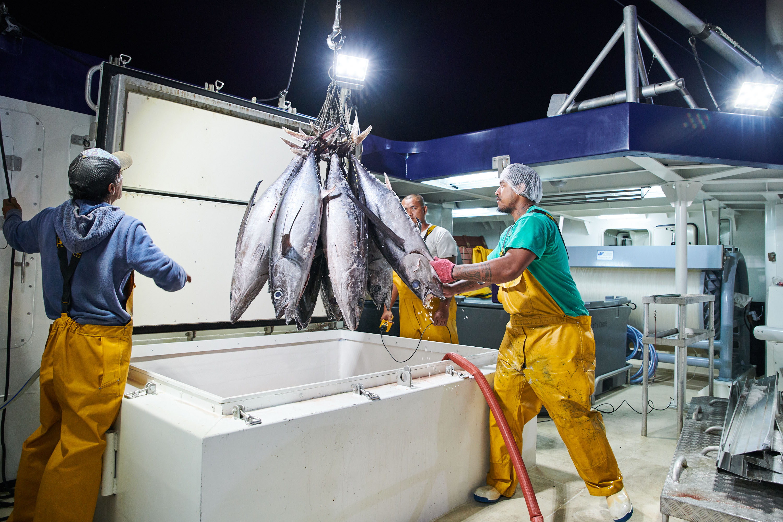 La défiscalisation nationale pour deux thoniers de Tahiti Tuna