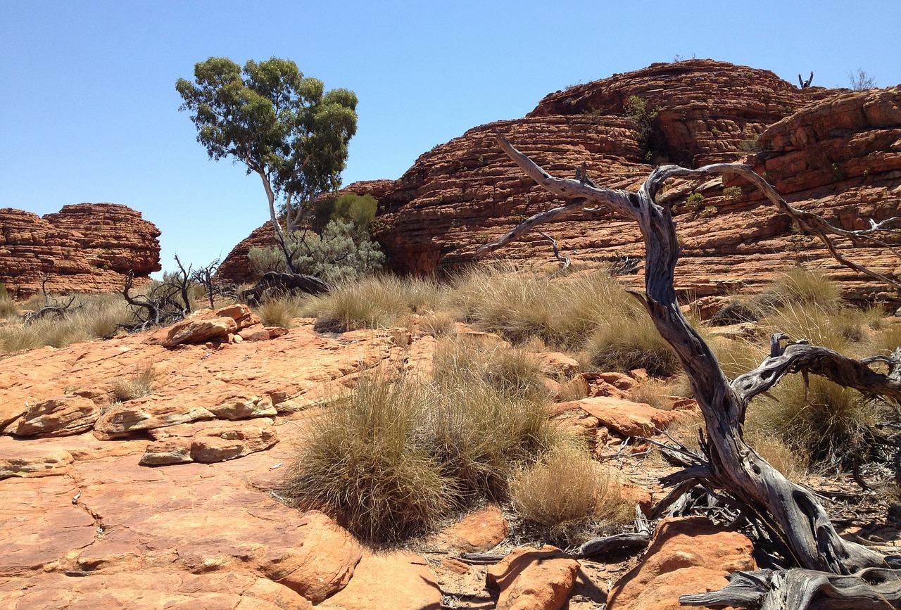 Australie: découverte du corps d'une touriste allemande portée disparue