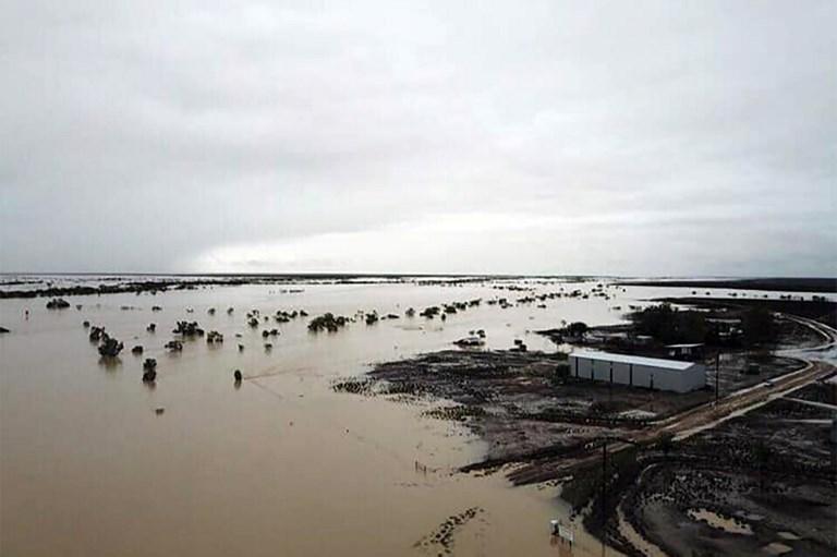 Inondations en Australie : une hécatombe redoutée pour le bétail