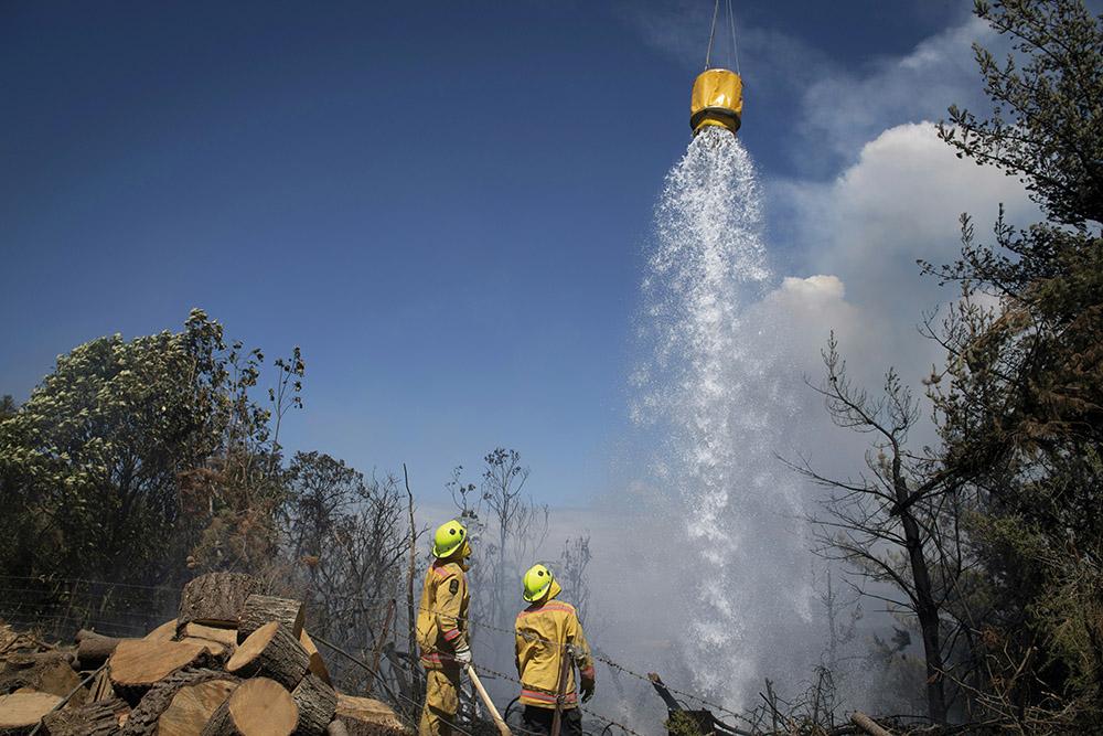 Nouvelle-Zélande: Un important feu de forêt risque de durer des semaines