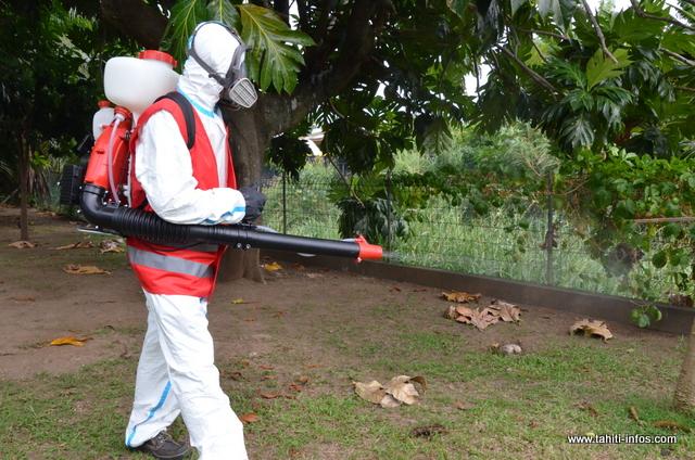 Un cas de dengue 2 à Mahina