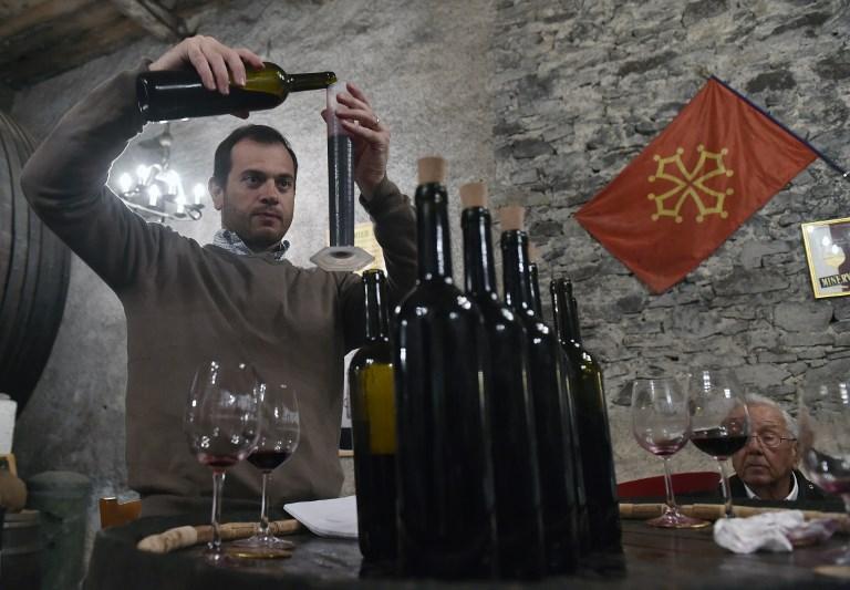 """Dans l'Aude, des vignerons inventent le """"bio"""" de demain"""