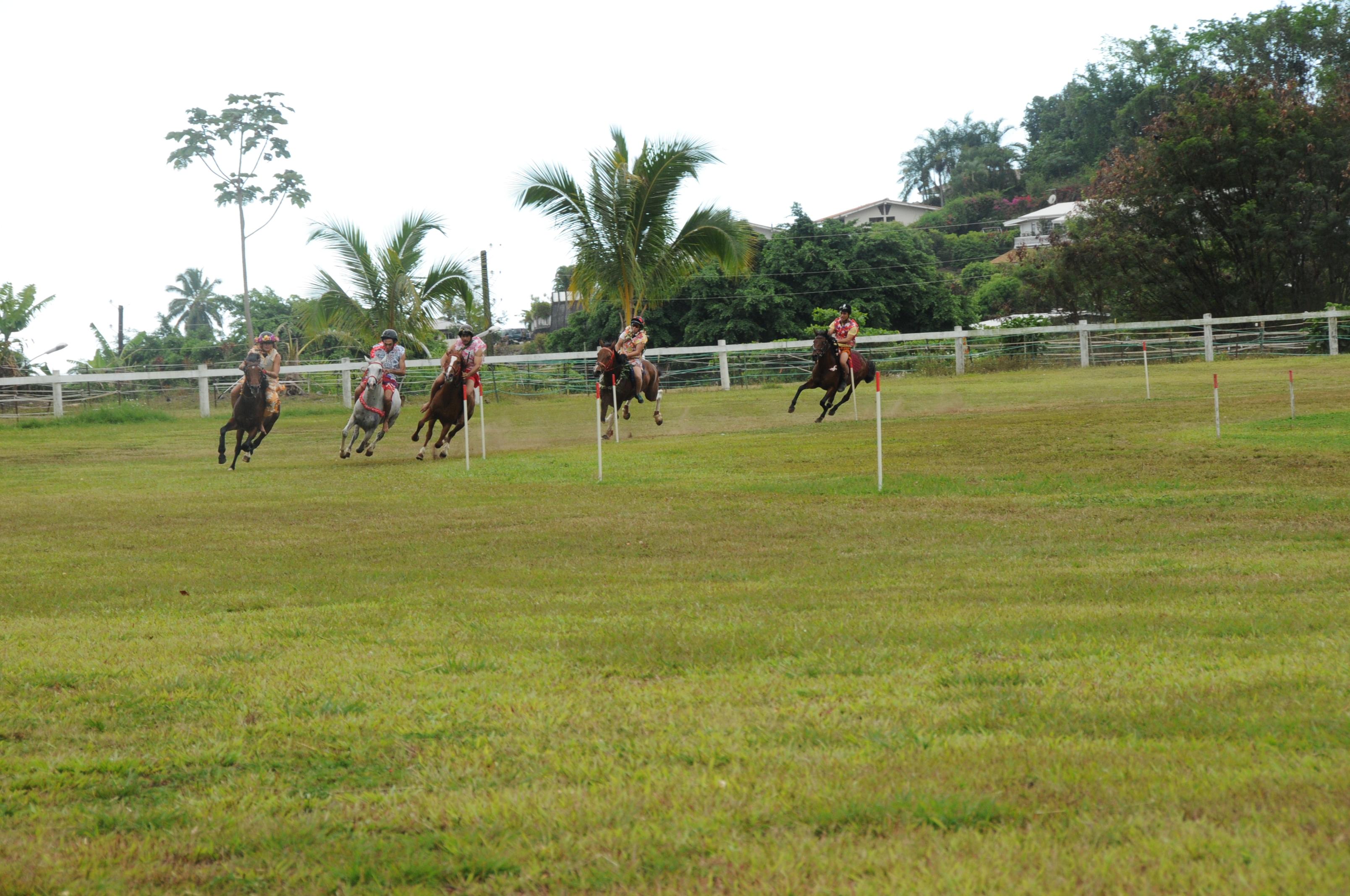 L'association hippique à la recherche de nouveaux jockeys