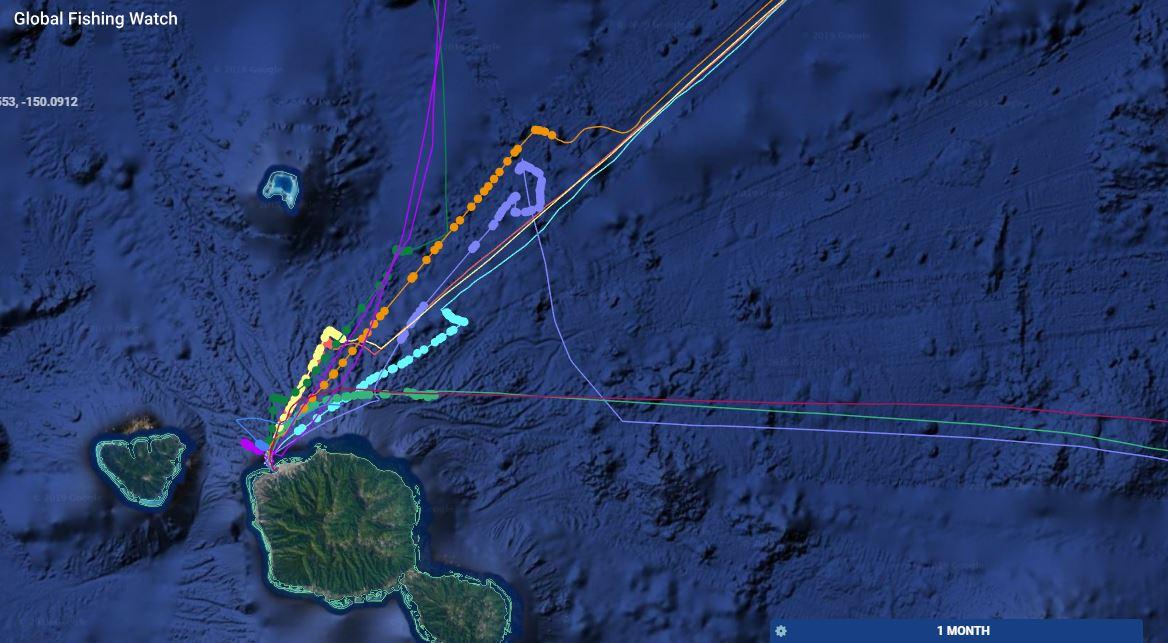 Leur comportement au large du port de Papeete. Les bateaux semblent surtout être en train d'attendre, certains coupant même leurs moteurs et partant à la dérive.