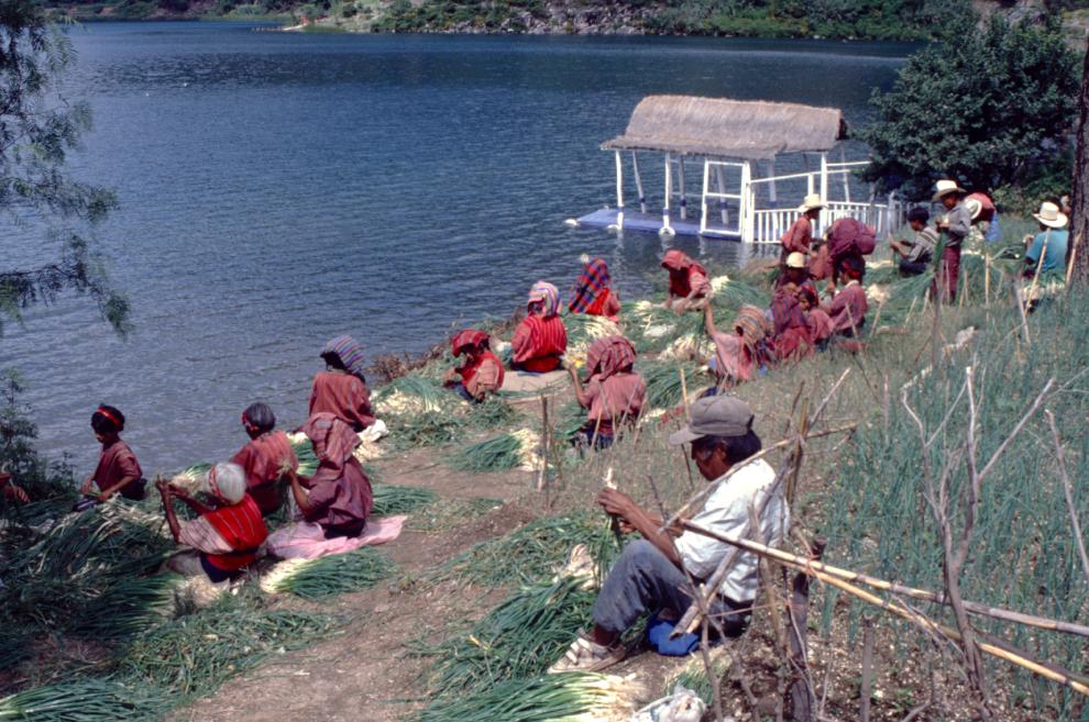 A quelques encablures de la maison du diable, ces paysans mettent en commun leur énergie pour préparer des bottes d'oignons qui seront vendues au marché de Solola.