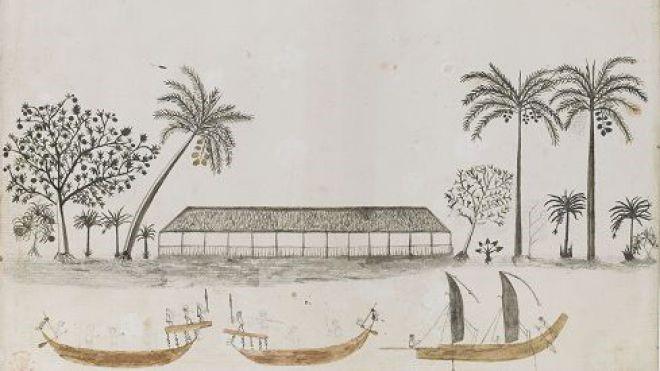 Nous ne disposons d'aucun portrait de Tupaia. Ci-dessus une aquarelle qui lui est attribuée. (Collection British Library).