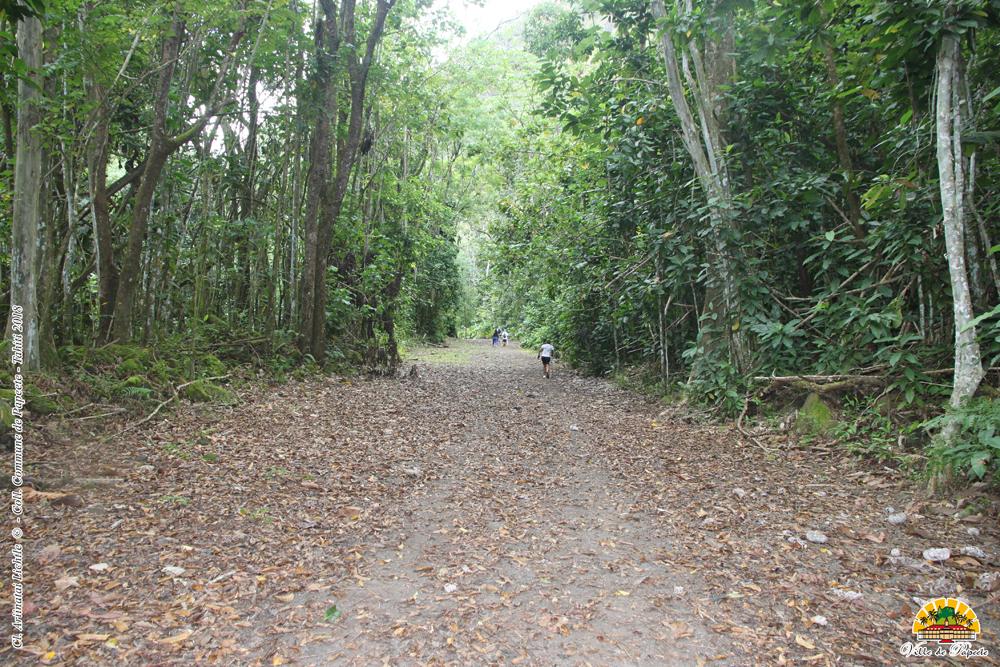 La vallée de la Fautaua de nouveau fermée