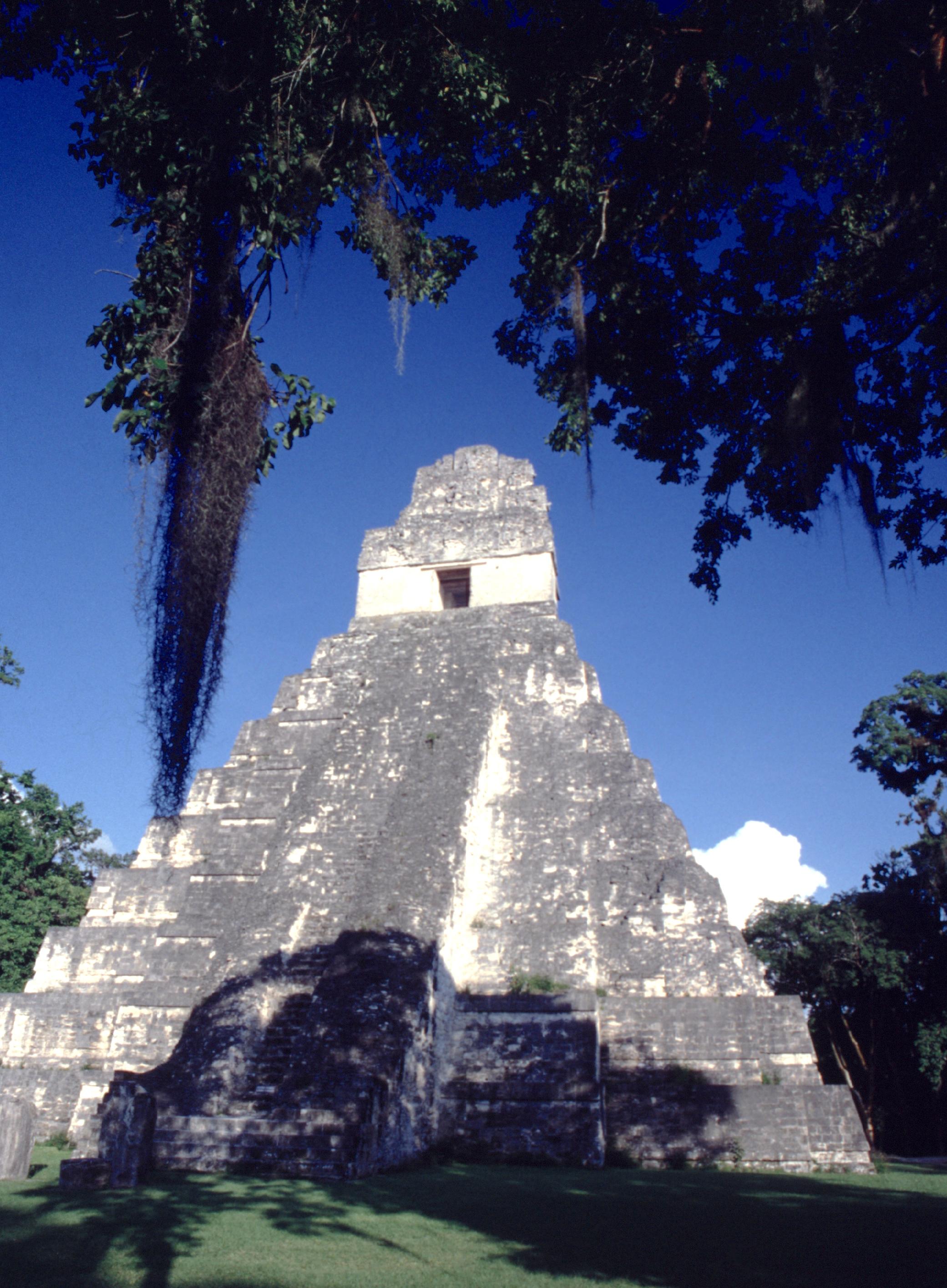 Le sublime temple I au cœur de la grande cité maya ; la végétation tout autour rappelle que la jungle ne demande pas mieux que de recouvrir les ruines si elles étaient à nouveau abandonnées.