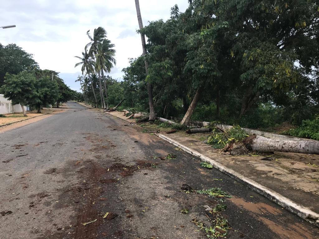 Cyclone au Mozambique: un mort et de nombreux dégâts, selon un premier bilan