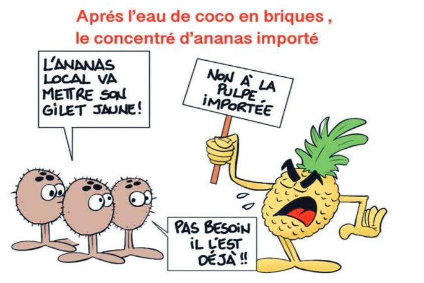 """"""" Le concentré d'ananas importé """" vu par Munoz"""