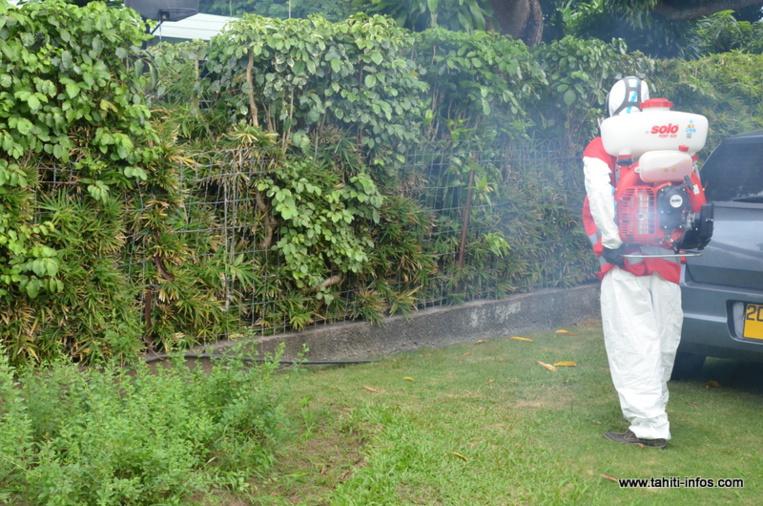 Lutte contre la dengue de type 2 : De nouvelles pulvérisations prévues à Mahina