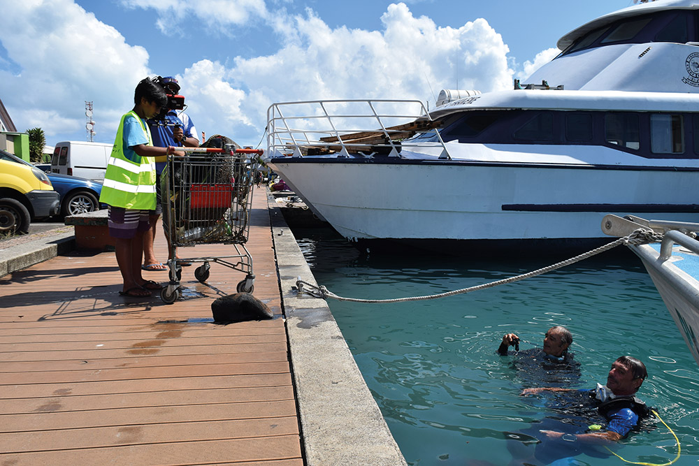 Les élèves du collège de Faaroa ont prêté main forte au nettoyage du port.
