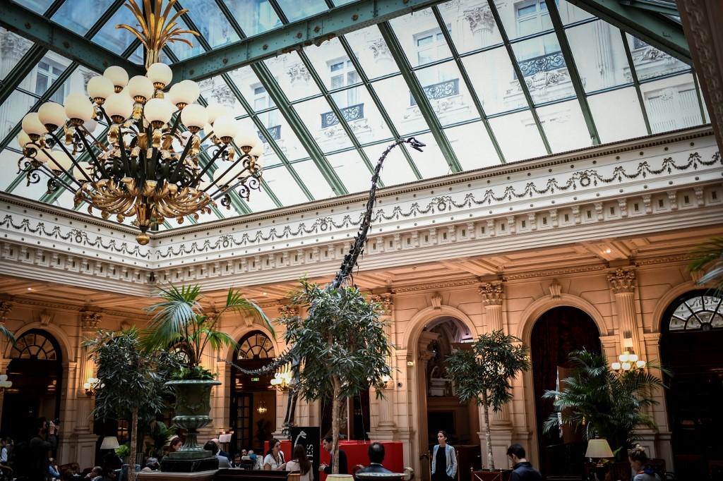 Un cousin du Diplodocus s'affiche dans un grand hôtel parisien avant sa vente