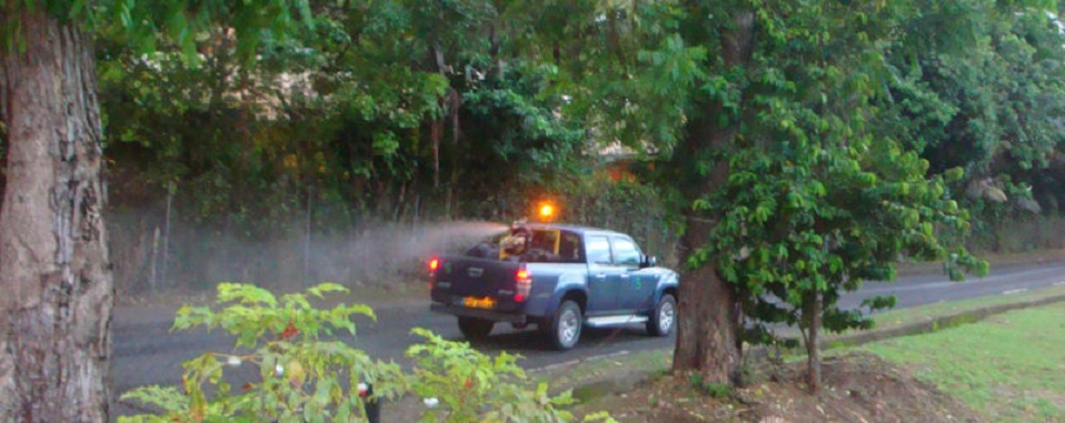 Une pulvérisation d'insecticide est prévue sur Atuona, mardi et vendredi.