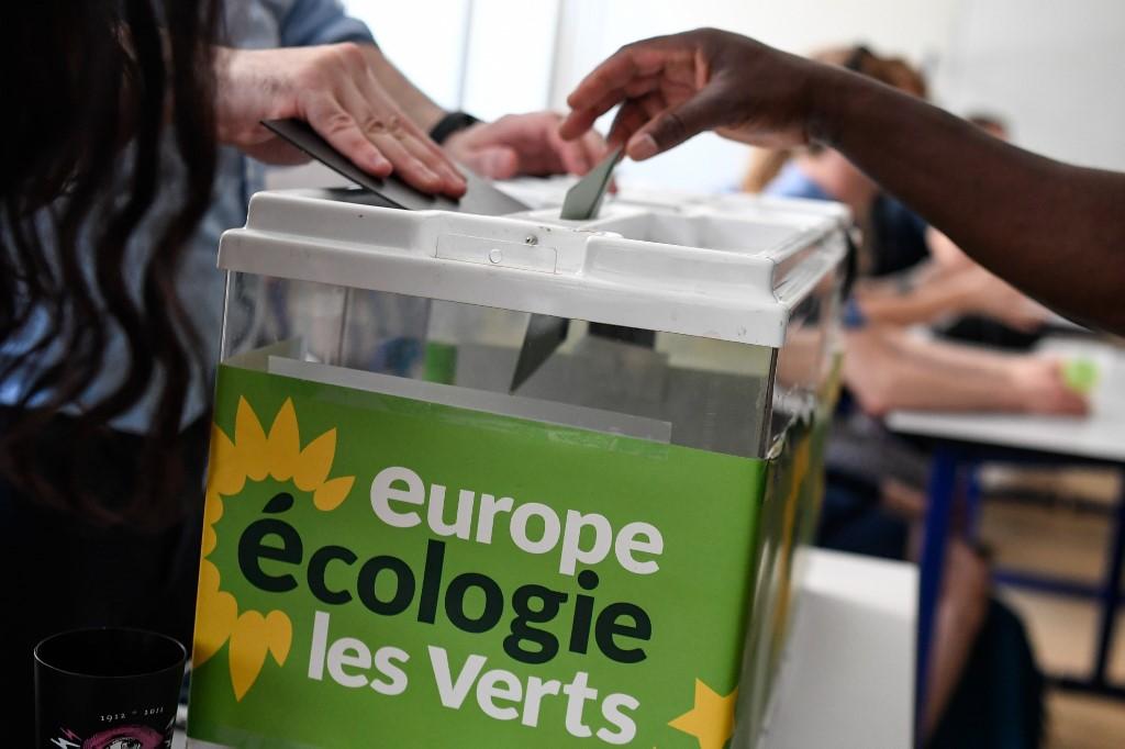 Les écologistes voient la vie en rose à six mois des municipales