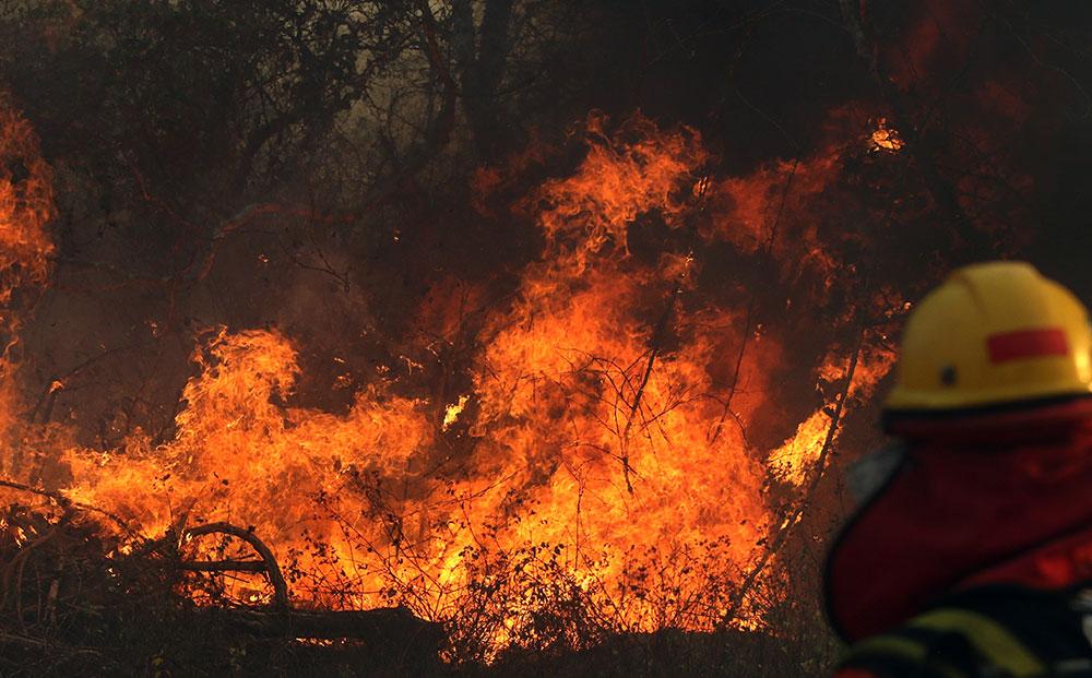 La Bolivie et le Paraguay eux aussi en proie aux feux de forêt