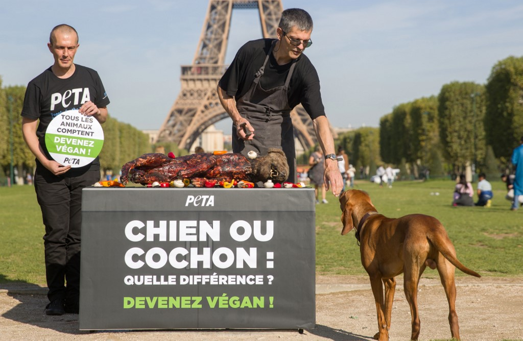 """Un """"chien"""" sur un barbecue, les vegans interpellent les touristes à Paris"""