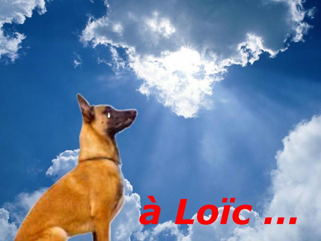 """Hommage au brigadier Loïc Ly Sao"", par Munoz"