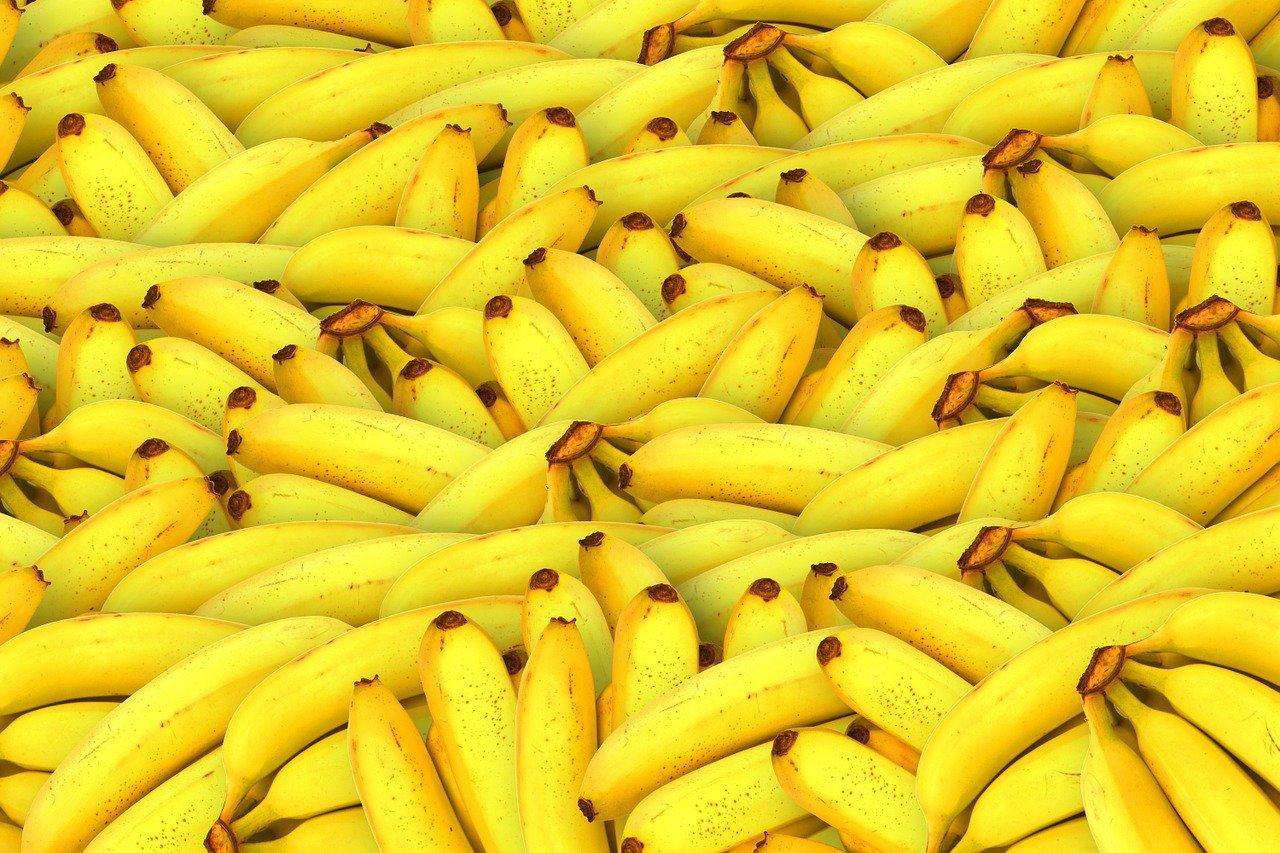 Italie : 1,2 tonne de cocaïne sud-américaine saisie dans un conteneur de bananes