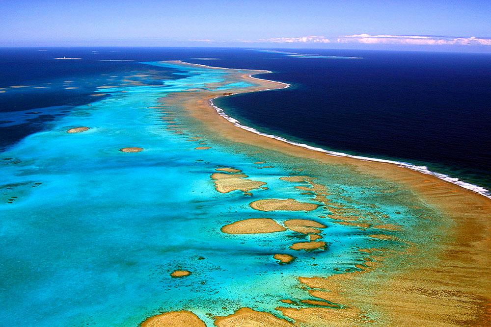 La Nouvelle-Calédonie parie sur la micro-biodiversité pour diversifier son économie