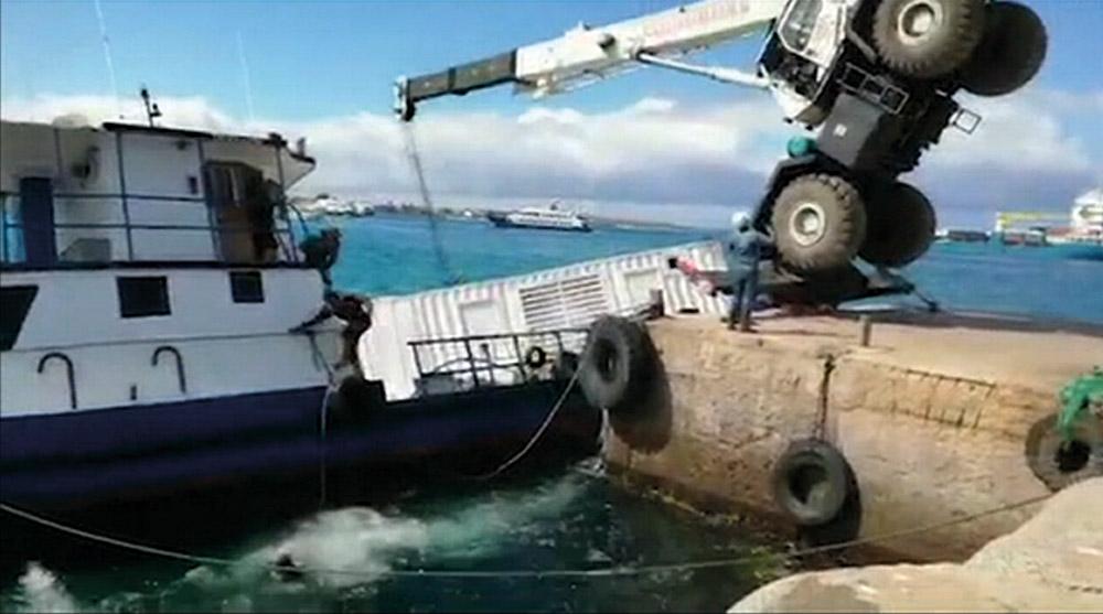 La faune des Galapagos épargnée par la nappe de diesel