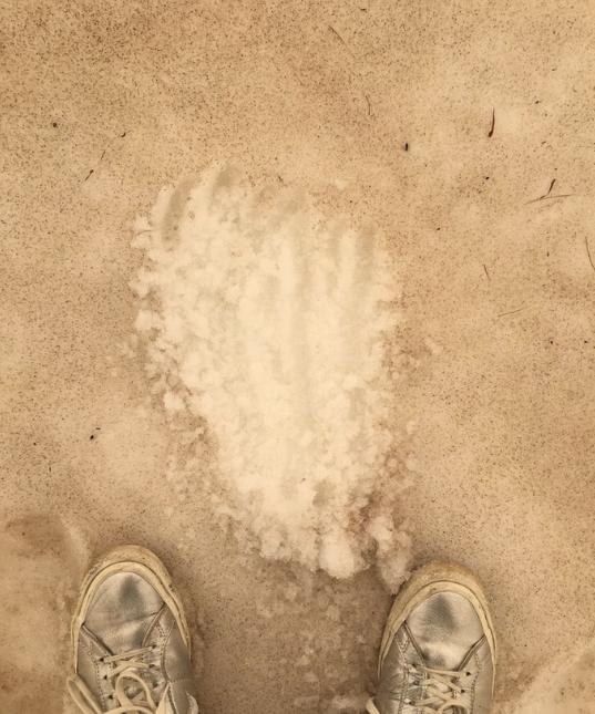 Le blanc immaculé des glaciers a pris une teinte marron. Photo : Fabulousmonster / Twitter