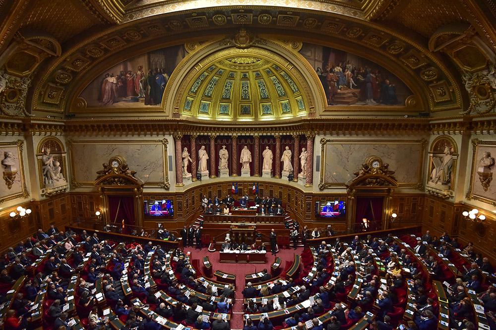 Bioéthique: le Sénat vote la PMA pour toutes, mais pas le remboursement pour toutes