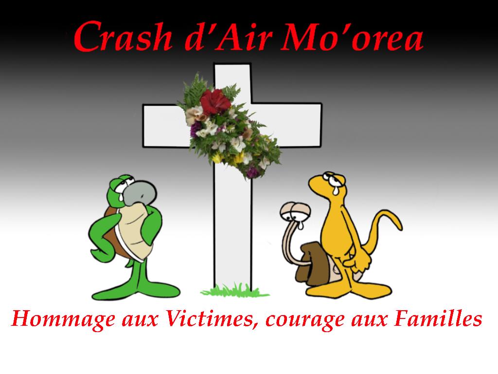 """""""Hommage aux victimes du Crash d'Air Moorea"""", par Munoz"""