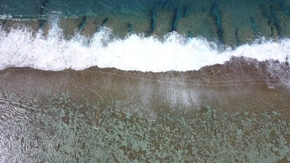 Les empreintes laissées par les chenilles de la drague sur 2,5 kilomètres de récif à Maupiti. (Photo : Facebook Maupiti Sport).