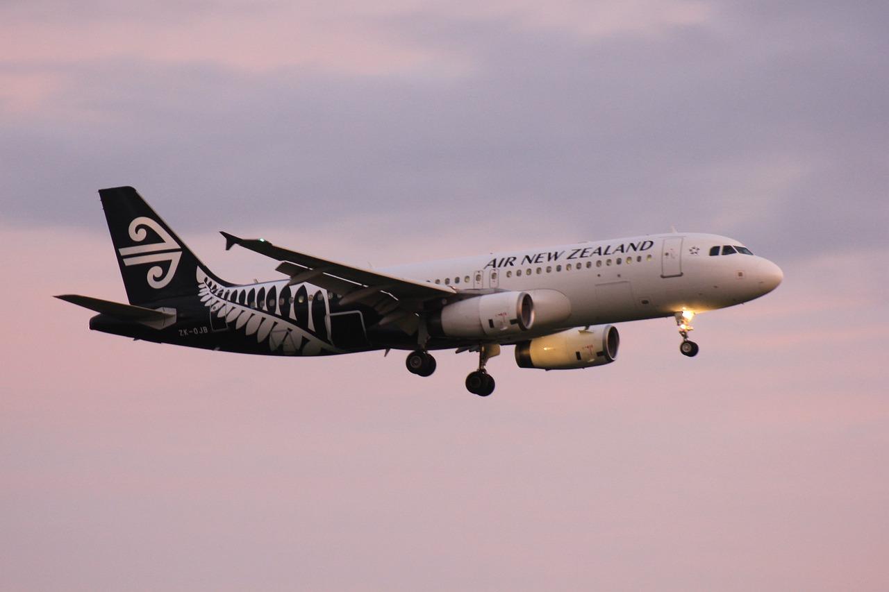 La Nouvelle-Zélande va affréter un vol pour évacuer ses ressortissants de Wuhan