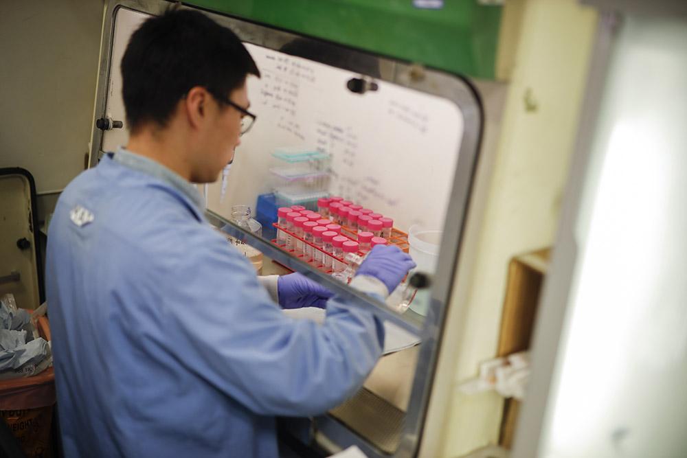 """L'OMS voit une """"chance réaliste"""" d'arrêter le nouveau virus, """"COVID-19"""""""