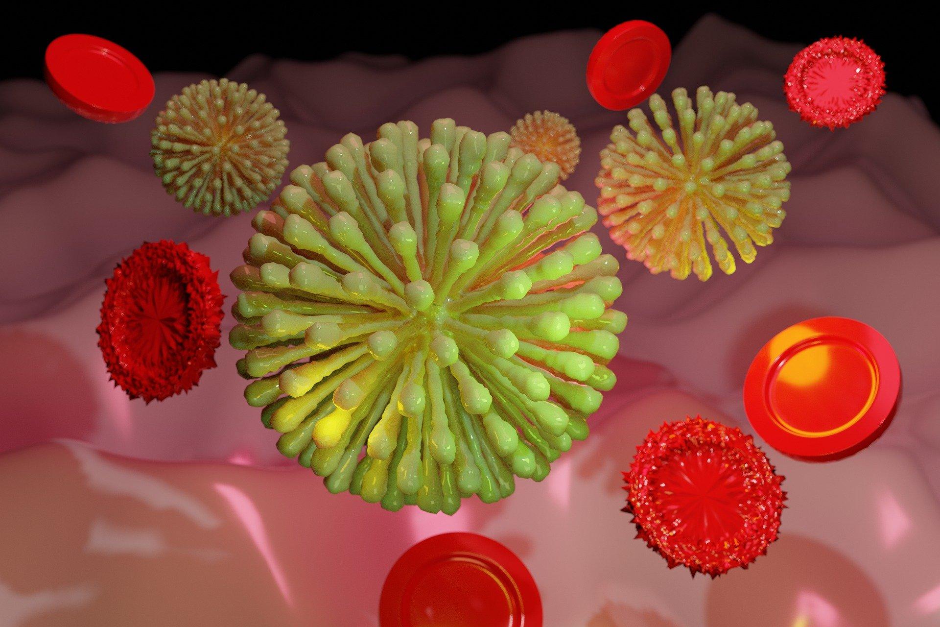 Le coronavirus en questions