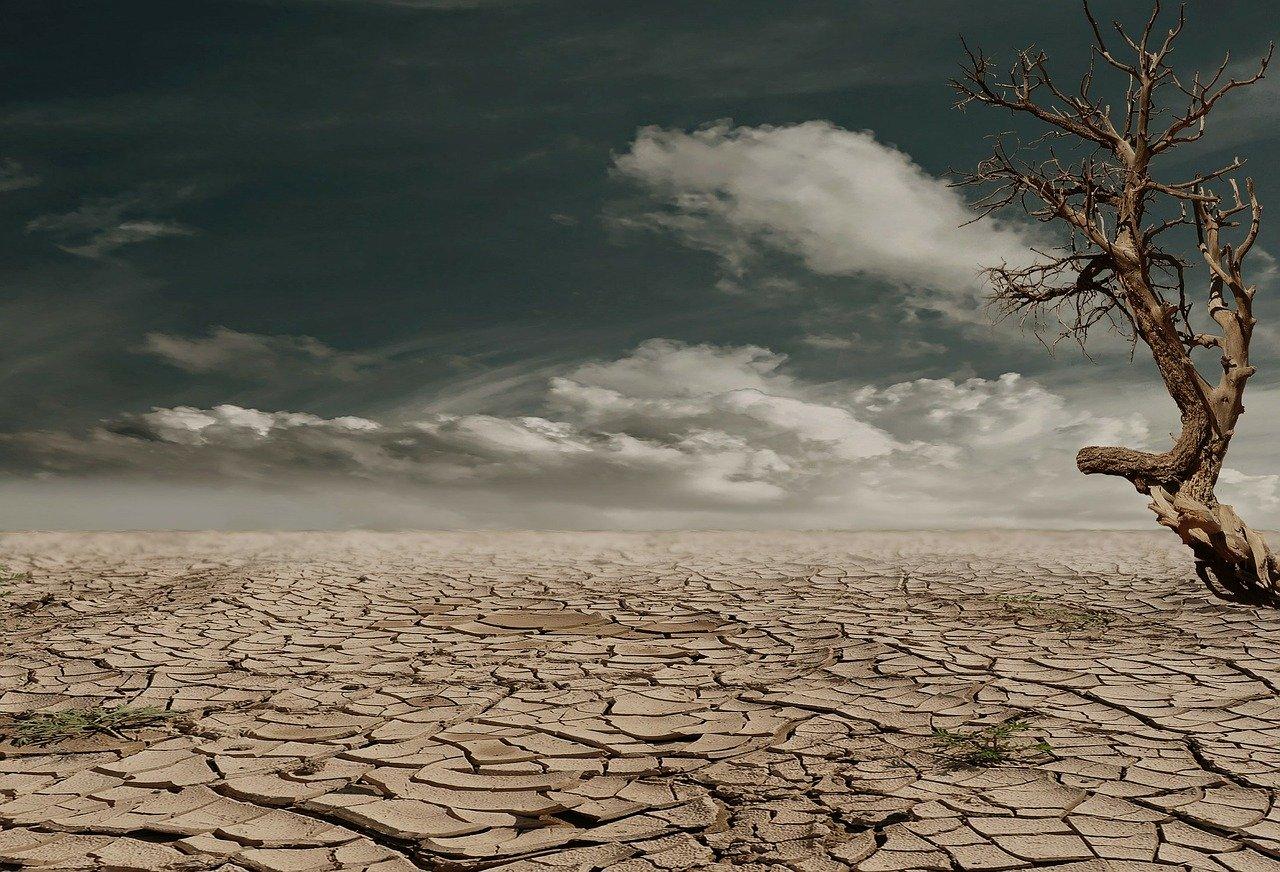 Le climat sera-t-il au coeur de la relance économique?