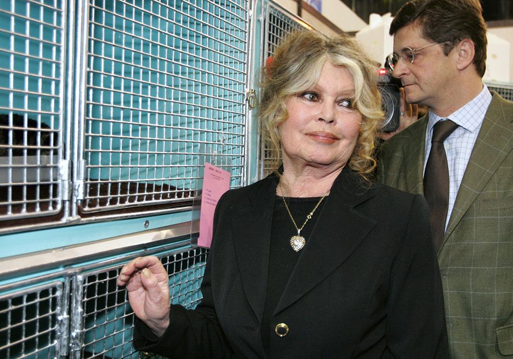 Brigitte Bardot renvoyée en correctionnelle pour injures raciales envers les Réunionnais